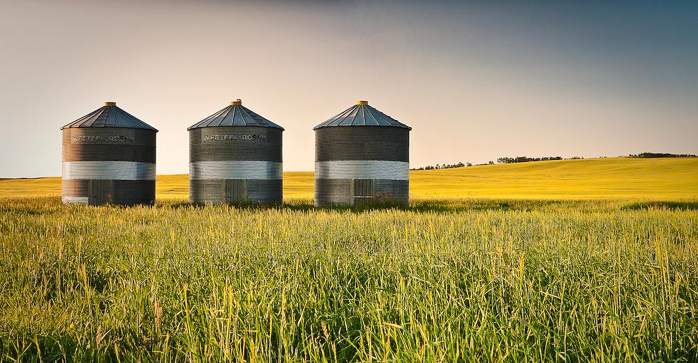 Summer in the Alberta prairies