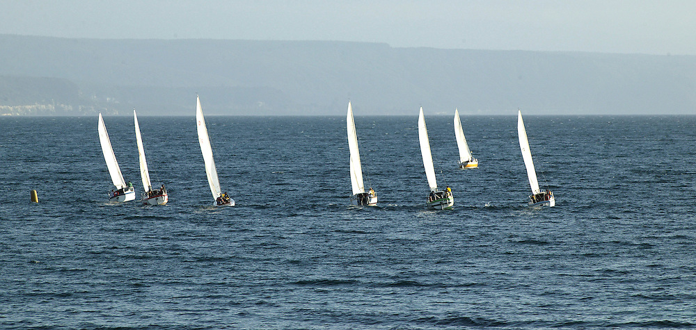 Yachts racing in the Wednesday evening racing regatta held each week on Lake Taupo, New Zealand, October 17, 2004. Credit:SNPA / Rob Tucker