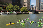 Kayakers on the Chicago River with the DuSable Bridge on a summers day in Chicago, Illinois, USA
