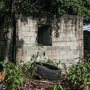 Discarded tires are breeding areas for mosquitos. The Zika virus is spreading rapidly in Puerto Rico and pregnant women are at risk for becoming infected with Zika which can cause microcephaly and other birth defects. If the current trends continue, at least 1 in 4 people, including women who become pregnant, may become infected with Zika.