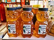 """U.S.A., New Mexico. Albuquerque. """"Chile Traditions"""" shop. Jalapeno honey bears."""