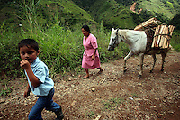 A boy and his mother bring a load of firewood back to their home along a remote road in a coca-growing region of the southern Colombian state of Nariño, on Friday, June 22, 2007. (Photo/Scott Dalton)