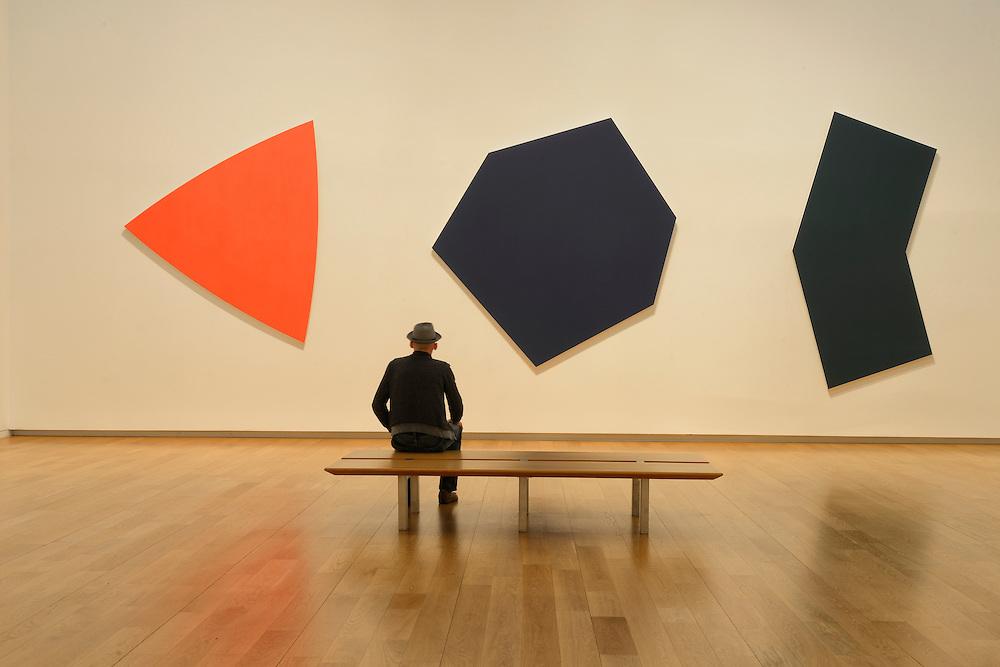 Ellsworth Kelly,Painting,Modern Art Museum of Fort Worth, MOMA,Fort Worth,Texas,USA