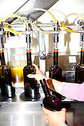 Olive oil made from olive trees on their 14,000 acres is bottled at the Seka Hills Tasting Room in Brooks, Calif., on Tuesday, September 15, 2015.