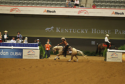 VAN GRUNSVEN Anky, Whizashiningwalla BB<br /> Kentucky - Alltech FEI WEG 2010<br /> /Stefan Lafrentz