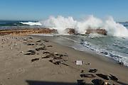 Waves Crashing Over Children's Pool at La Jolla Cove in San Diego California