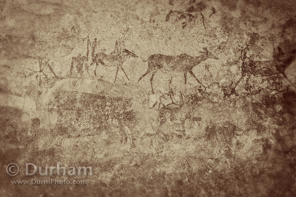 Animals and human figures depicted in San bushman rock paintings, estimated at around 2000 years old, in Nswatugi Cave in Matobo National Park, Zimbabwe. © Michael Durham / www.DurmPhoto.com