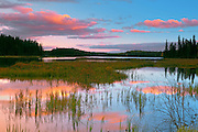 Wetland at sunset<br /> Duck Mountain Provincial Park<br /> Manitoba<br /> Canada