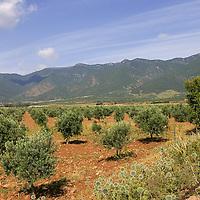 Islahiye Valley