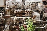 Overgrown rusting abandoned vehicle engine, UK