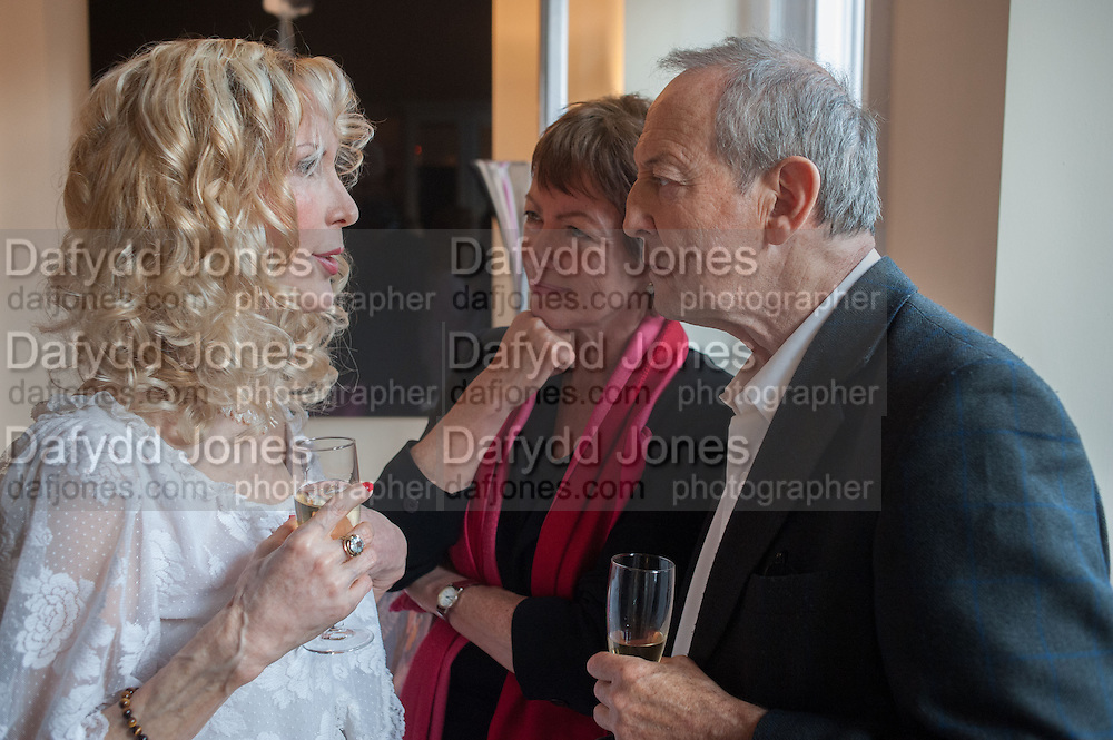 BASIA BRIGGS; SUSIE TOPOLSKI; DAN TOPOLSKI, Party given by Basia Briggs and Richard Briggs at their home in Chelsea. London. 14 May 2012