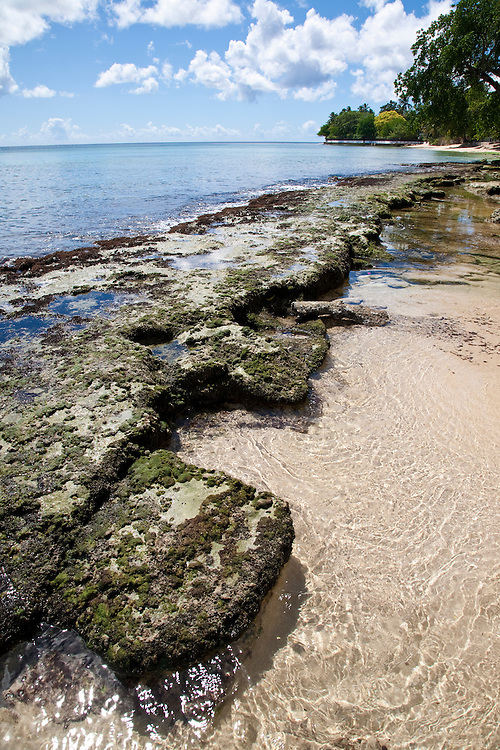 There are many beautiful spots to visit in Barbados along the coast.  From the rugged North Point to calm idealic West Coast and freshness of the South. All have their own natural beauty and must be seen, St Albans Beach, Barbados.<br /> LOW TIDE AND REEF, BARBADOS