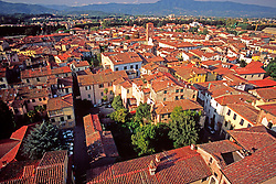 A view of the rooftops of the Tuscan town of Lucca, Italy.