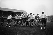 Irish Rugby Football Union, Ireland v France, Five Nations, Landsdowne Road, Dublin, Ireland, Saturday 23rd January, 1965,.23.1.1965, 1.23.1965,..Referee- D G Walters, Welsh Rugby Union, ..Score- Ireland 3 - 3 France, ..Irish Team, ..T J Kiernan,  Wearing number 15 Irish jersey, Full Back, Cork Constitution Rugby Football Club, Cork, Ireland,..P J Casey, Wearing number 14 Irish jersey, Right Wing, Landsdowne Rugby Football Club, Dublin, Ireland, ..J C Walsh,  Wearing number 13 Irish jersey, Right Centre, University college Cork Rugby Football Club, Cork, Ireland,..M K Flynn, Wearing number 12 Irish jersey, Left Centre, Wanderers Rugby Football Club, Dublin, Ireland, ..K J Houston, Wearing number 11 Irish jersey, Left Wing, Bruff Rugby Football Club, Limerick, Ireland, and, Oxford University Rugby Footabll Club, Oxford, England, ..C M H Gibson, Wearing number 10 Irish jersey, Stand Off, Cambridge University Rugby Football Club, Cambridge, England, and, N.I.F.C, Rugby Football Club, Belfast, Northern Ireland, ..R M Young, Wearing number 9 Irish jersey, Scrum Half, Queens University Rugby Football Club, Belfast, Northern Ireland,..S MacHale, Wearing number 1 Irish jersey, Forward, Landsdowne Rugby Football Club, Dublin, Ireland, ..K W Kennedy, Wearing number 2 Irish jersey, Forward, Queens University Rugby Football Club, Belfast, Northern Ireland,..R J McLoughlin, Wearing number 3 Irish jersey, Captain of the Irish team, Forward, Gosforth Rugby Football Club, Newcastle, England, ..W J McBride, Wearing number 4 Irish jersey, Forward, Ballymena Rugby Football Club, Antrim, Northern Ireland,..W A Mulcahy, Wearing number 5 Irish jersey, Forward, Bective Rangers Rugby Football Club, Dublin, Ireland, ..M G Doyle, Wearing number 6 Irish jersey, Forward, University College Dublin Rugby Football Club, Dublin, Ireland,..R A Lamont, Wearing number 8 Irish jersey, Forward, Instonians Rugby Football Club, Belfast, Northern Ireland, ..N Murphy, Wearing number 7 Irish jersey, Forward