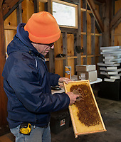Jeff McCormack shows the honeycomb in a frame from last seasons hives at his shop at McCormack's Farm in Gilmanton.  (Karen Bobotas/for the Laconia Daily Sun)