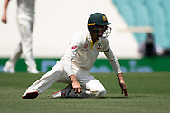 Australian player Marcus Harris fields the ball at the 4th Cricket Test Match between Australia and India at The Sydney Cricket Ground in Sydney, Australia on 03 January 2019.