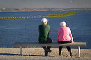 Elderly Friends Sitting On A Bench At Bolsa Chica Park