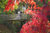 C&J Cambridge Mill Fall Wedding - Anne's Photos