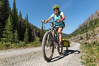 BC00639-00...MONTANA - Vicky Spring at the Whitefish Divide along Forest Service Road 114 section of the Great Divide Mountain Bike Route.