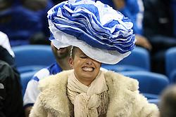 Brighton & Hove Albion fan - Mandatory byline: Jason Brown/JMP - 07966 386802 - 20/10/2015 - FOOTBALL - American Express Community Stadium - Brighton,  England - Brighton & Hove Albion v Bristol City - Championship