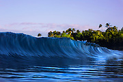 Hawaii waves with coconut trees