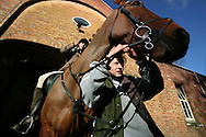 Rachel Bradbury, a girl groom at Pen Y Lan House, prepares one of the horses of the Wynnstay Hunt for a day's foxhunting. The Wynnstay Hunt, named after Sir Watkin Williams-Wynn, dated back to the 18th century and hunted on country estates in Shropshire, Cheshire and north Wales. Hunting with dogs in England and Wales became illegal on 18th February 2005 despite legal challenges to the ban and many hunts vowed to continue the ancient sport of foxhunting, risking prosecution.