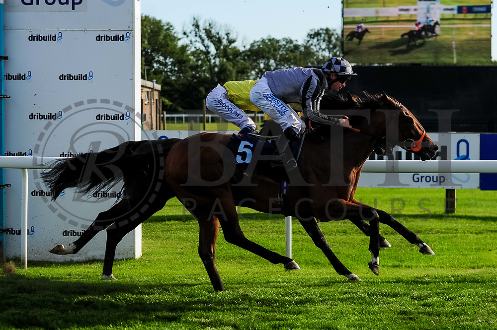 Amorously ridden by Fergus Sweeney and trained by Richard Hannon in the John Herman Handicap race.  - Ryan Hiscott/JMP - 14/09/2019 - PR - Bath Racecourse - Bath, England - Race Meeting at Bath Racecourse