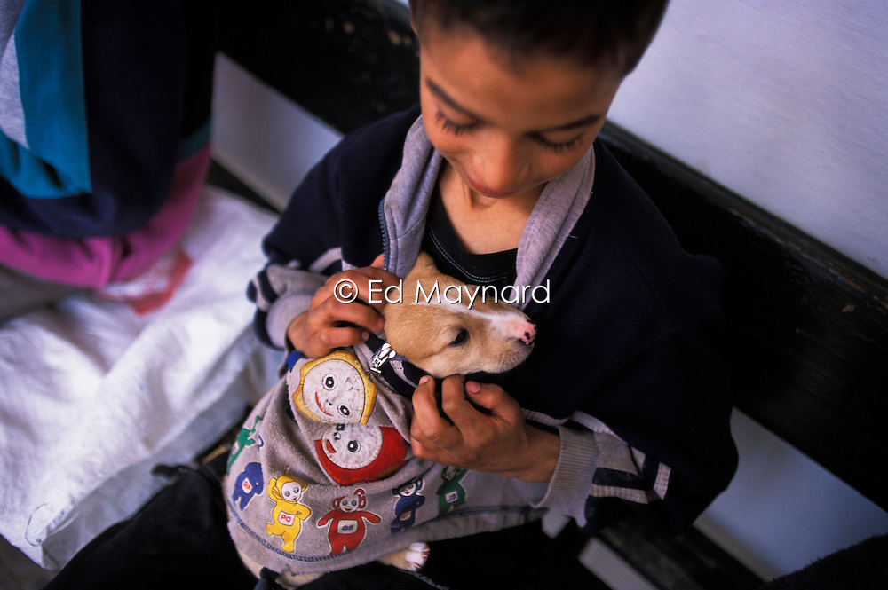 A boy keeps his puppy warm under his jumper while waiting to see a vet at the SPANA refuge, Marrakech, Morocco.