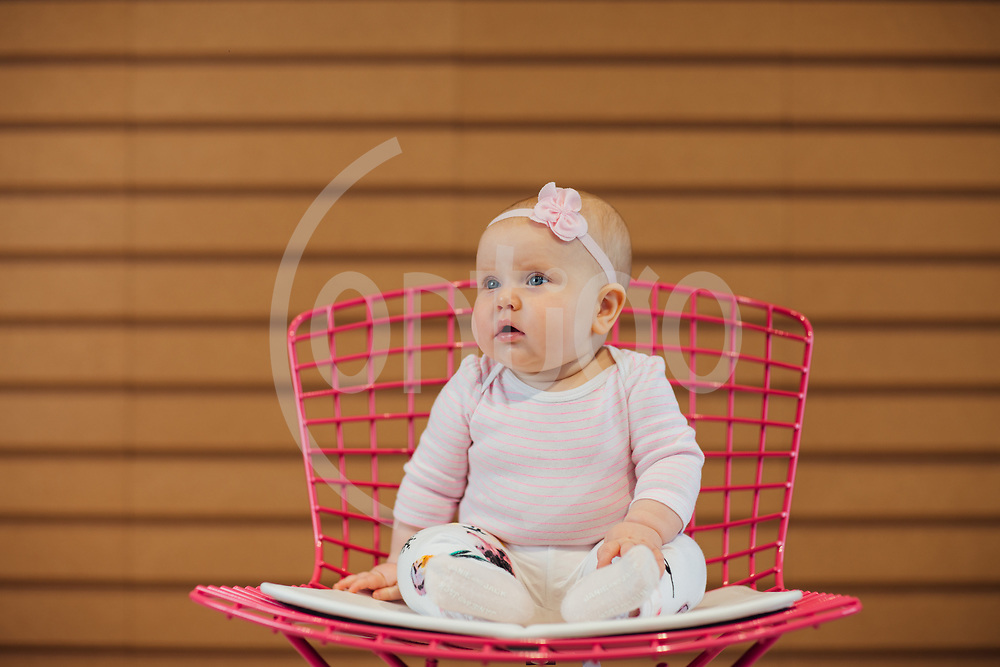 Knoll Furniture Portraits by Stephanie Ramones, Contigo Photos and Films