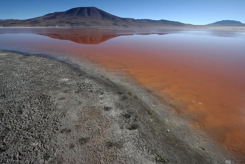Images from Laguna Colorada, at 4,278 metres above sea level in the Bolivian Altiplano