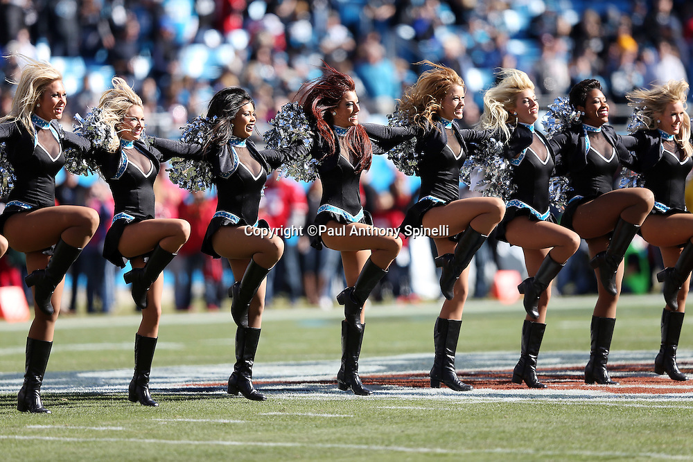 The Carolina Panthers cheerleaders do a dance routine during the NFC Divisional Playoff NFL football game against the San Francisco 49ers on Sunday, Jan. 12, 2014 in Charlotte, N.C. The 49ers won the game 23-10. ©Paul Anthony Spinelli