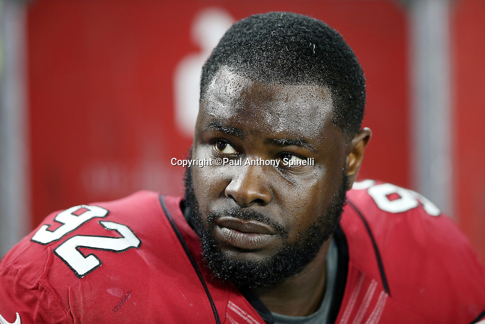 Arizona Cardinals defensive end Frostee Rucker (92) looks on from the sideline during the NFL NFC Divisional round playoff football game against the Green Bay Packers on Saturday, Jan. 16, 2016 in Glendale, Ariz. The Cardinals won the game in overtime 26-20. (©Paul Anthony Spinelli)