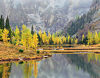 Autumn larches and Moor Lakes on the Opabin Plateau Yoho National Park British Columbia beautiful