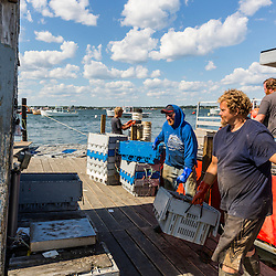 Dock workers Royal Allen (left) and Gary Emerson unloads lobster from Captain Richard Smith's boat, 'Bad Behavior',  on the wharf at Great Wass Lobster in Beals, Maine.