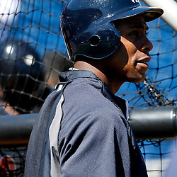 March 05, 2011; Clearwater, FL, USA; New York Yankees center fielder Curtis Granderson (14) prior to a spring training game against the Philadelphia Phillies at Bright House Networks Field. Mandatory Credit: Derick E. Hingle-US PRESSWIRE