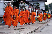 A long line of Buddhist monks walk bare footed with their bowls in this daily early morning rital of alms collection on a street in Luang Prabang, Laos.