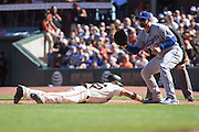 San Francisco Giants center fielder Gorkys Hernandez (66) dives back to first base during a Los Angeles Dodgers pickoff attempt at AT&T Park in San Francisco, Calif., on October 1, 2016. (Stan Olszewski/Special to S.F. Examiner)