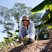 Bolivia. Copacobana. Ozvaldo tends to his tomatoe plants. Every Saturday the community come together to work on the camellones and eat together and discuss community issues.