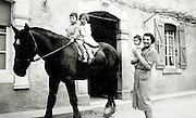little boy and girl sitting on a big farm work horse with mother and toddler baby France