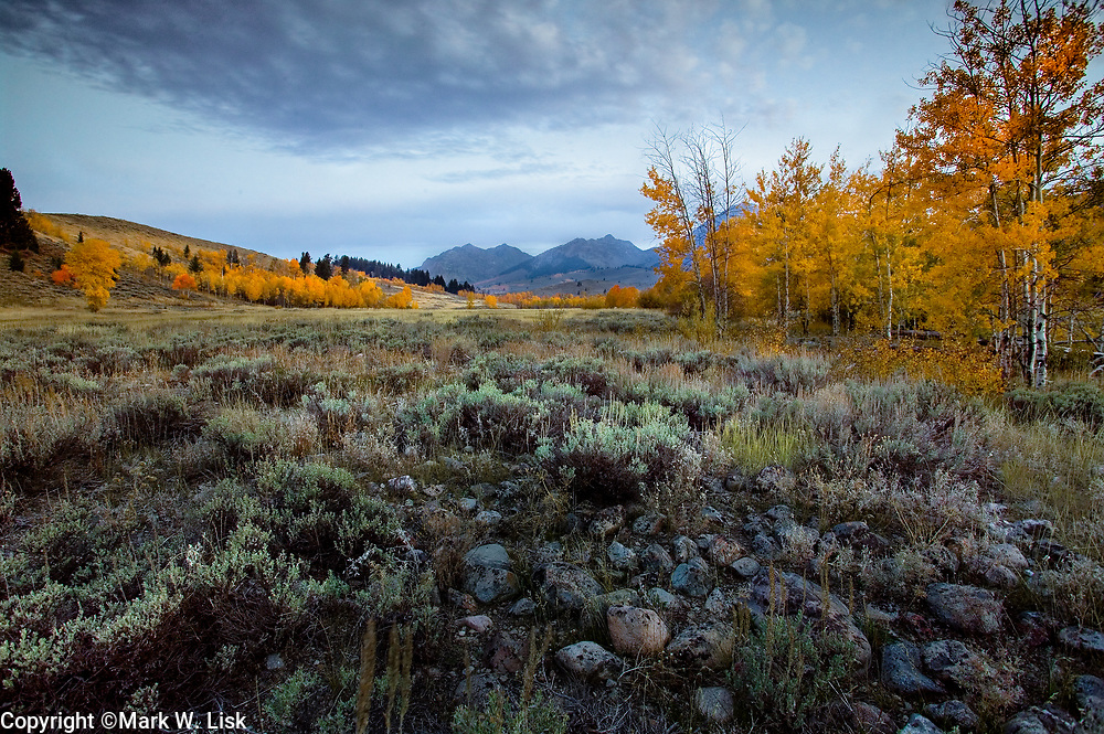 Aspen in fall foliage fill cover the rocky terain in the Boulder Mountain range of central Idaho.