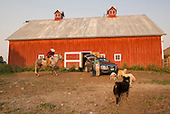 Ranch, cowboy, family, riding, horse, barn, Montana