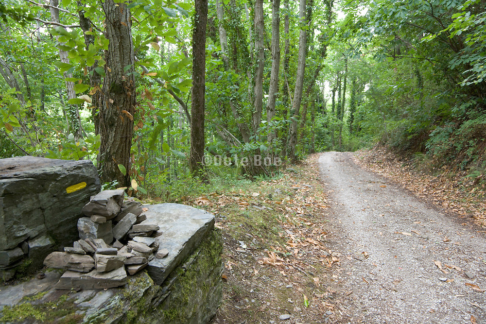 path with a marked stone for hiking directions
