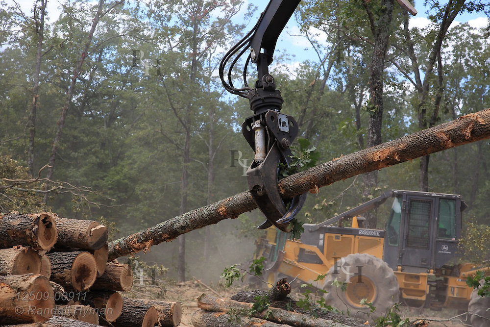 Ultra-mechanized clearcutting of an Ozarks woodland is demonstrated for general public at Missouri In Woods Logging Demo near Viburnum, Missouri.