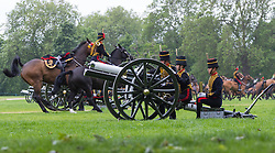 Hyde Park, London, June 2nd 2016. Soldiers and guns of the King's Troop Royal Horse Artillery fire a 41 round Royal Salute to mark the 63rd anniversary of the coronation of Britain's Monarch HM Queen Elizabeth II. PICTURED: The horses withdraw once the guns are positioned.