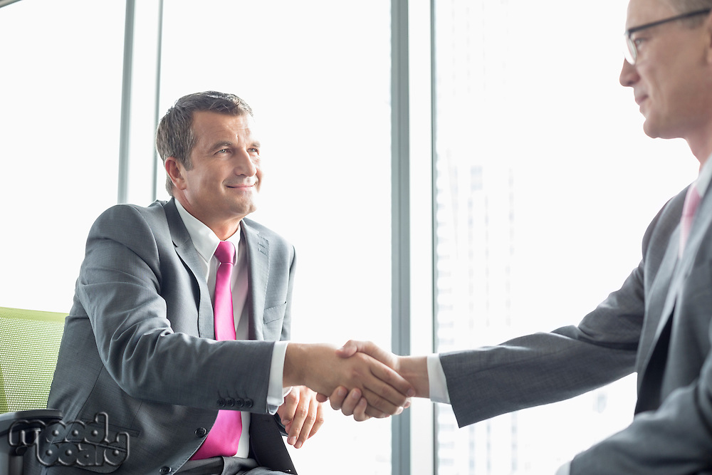 Mature businessmen shaking hands in office