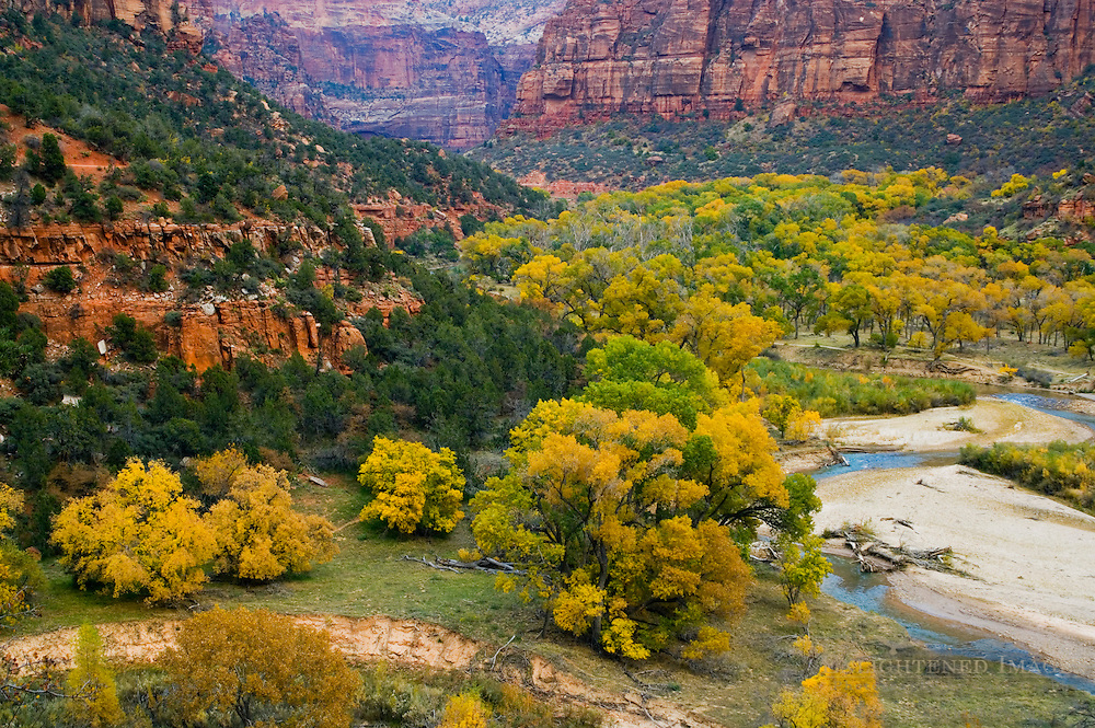 Virgin River and fall colors on trees below cliffs in Zion Canyon, Zion National Park, Utah