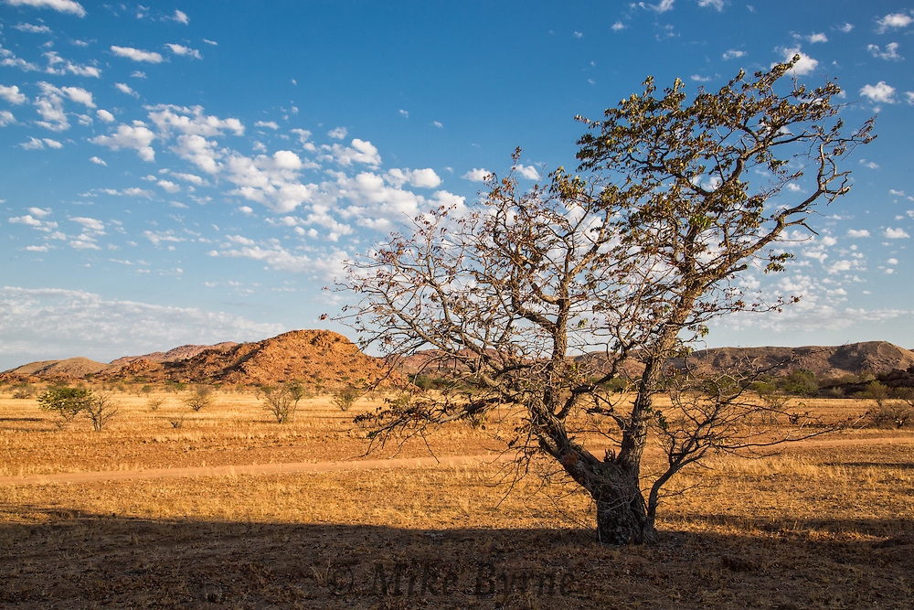 Landscapes at Camp Kipwe in Damaraland, Namibia.