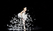 Les Ballets Trockadero de Monte Carlo <br /> at the Peacock Theatre, London, Great Britain <br /> press photocall <br /> 16th September 2015 <br /> <br /> <br /> Programme 1<br /> press night 16th September 2015 <br /> <br /> <br /> Dying Swan <br /> <br /> Joshua Thake as Eugenia Repelskii <br /> <br /> <br /> <br /> Photograph by Elliott Franks <br /> Image licensed to Elliott Franks Photography Services