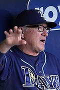 Tampa Bay Rays manager Joe Maddon chats in the dugout before his team's baseball game against the Kansas City Royals at Kauffman Stadium in Kansas City, Mo., Tuesday, April 30, 2013.  (AP Photo/Colin E. Braley).