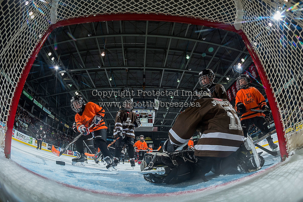 KELOWNA, CANADA - JANUARY 18: Mini minor hockey players take to the ice during intermission between the Kelowna Rockets and the Moose Jaw Warriors on January 18, 2017 at Prospera Place in Kelowna, British Columbia, Canada.  (Photo by Marissa Baecker/Shoot the Breeze)  *** Local Caption ***